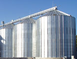 Grain storage and processing